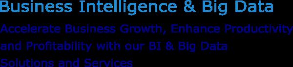 Caption1-BI and Big Data1