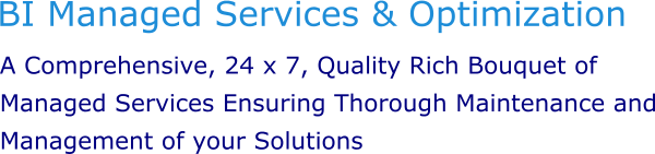 Caption2-BI Managed Services2